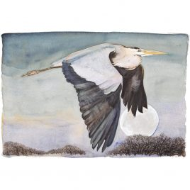 X4234 Heron In Flight 3/145 – Premium Edition