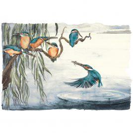 X4235 Kingfishers 3/145 – Premium Edition
